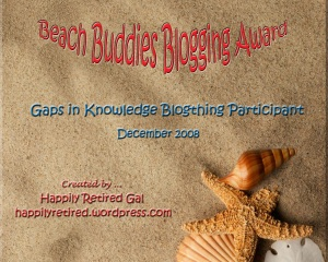 beachbuddiesblogthingaward-happilyretired